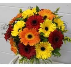 Яркий веселый букет из 17 желтых, оранжевых, красных гербер с солидаго зеленью и лентами.
