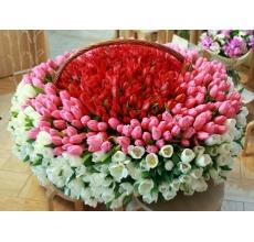 Корзине из 999 тюльпанов трех цветов - красные, розовые, белые.