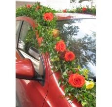 Гирлянды из рускуса, оранжевых роз, желтых калл, левкоспермума, асклепии.