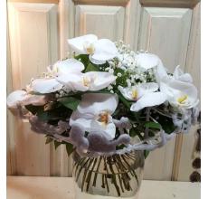 Праздничный изящный букет на декоративном каркасе. Состав: 15 орхидей фаленопсис, гипсофилла, зелень, атласная лента.