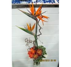 Высокий праздничный букет из двух веток стрелиции и  ветки корилуса, 5 оранжевых роз, трахелиума, экзотического левкоспермума, питоспорума с армированной лентой.