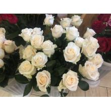 роза высокого качества