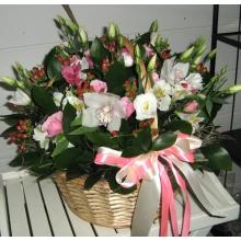 Корзина белых орхидей.