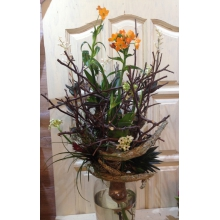 Букет-сад из тилландсии, оранжевого орнитогалума, суккулента, орхидеи лудизии на декоративном транспарентном каркасе.