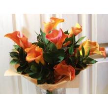 Букет из 7 теплых оранжевых калл с зеленью в натуральной упаковке с лентами.