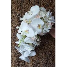 Букет из разных белых орхидей: орхидеи фаленопсис, дендробиум, стефанотис, кремовые кустовые розы.