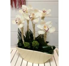 Веселая композиция из цветов орхидеи и экзотической зелени в керамическом кашпо.