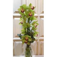 Букет из целой ветки орхидеи, бамбука, эвкалипта, рафии.