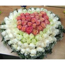 Композиция из 101 светлой розы на оазисе