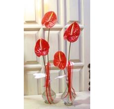Стеклянная ваза с гипсовыми листьями и двумя крупными яркими антуриумами с атласной и капроновой лентой
