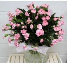 Букет из 31 ветки кустовой гвоздики, зелени в упаковке из двойного (розового и белого) фетра с бабочкой и атласными лентами.