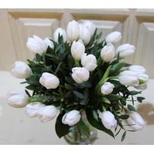 Букет из 25 белых тюльпанов с зелень.
