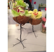 Настольная композиция из цветов орхидеи, кокосового ореха на ножке из проволоки. Орхидеи получают питание из капсулы с водой. Продолжительность жизни орхидеи 7-14 дней, в зависимости от влажности воздуха и температуры помещения.