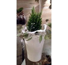 Комнатный кипарисовик в декоративном белом кашпо и веночком из воскированных листьев эвкалипта и декоративных элементов. Отсыпка из белого крупного грунта.