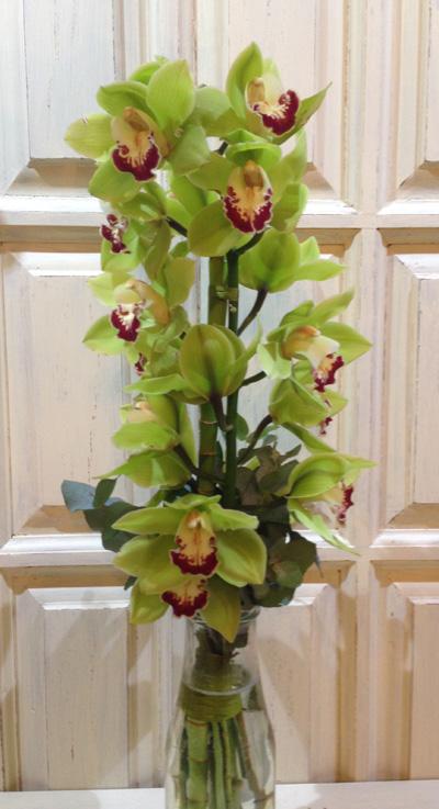 сожалению, судя букеты из веток орхидеи фото был тронут ответил