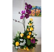 Фаленопсис и розы в керамическом кашпо
